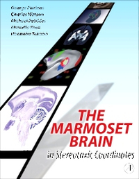 Cover of textbook The Marmoset Brain
