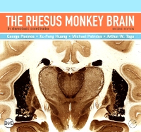 Cover of textbook The Rhesus Monkey Brain