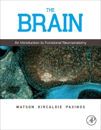 Cover of textbook The Brain
