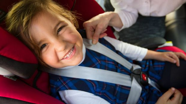 Professor Lynne Bilston from Neuroscience Research Australia, shows how to correctly fit a car seat to keep Bayleigh McIntosh age 5, from Coogee, nice and safe. If you can pinch the fabric, it is very likely too loose. Photo: Danielle Smith